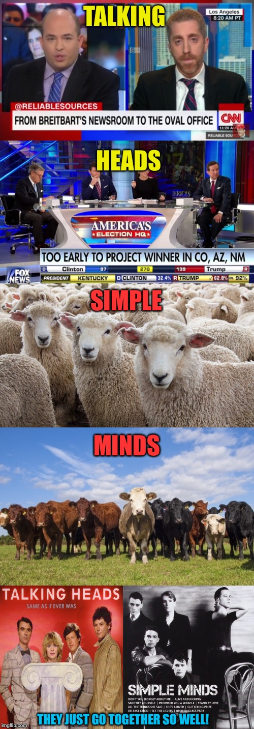 Media And Audience Or 80's Band Double Bill? | TALKING HEADS SIMPLE MINDS THEY JUST GO TOGETHER SO WELL! | image tagged in fox news,cnn,media,sheep,80's,music | made w/ Imgflip meme maker