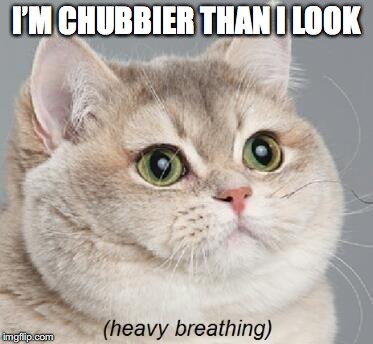 Heavy Breathing Cat Meme | I'M CHUBBIER THAN I LOOK | image tagged in memes,heavy breathing cat | made w/ Imgflip meme maker