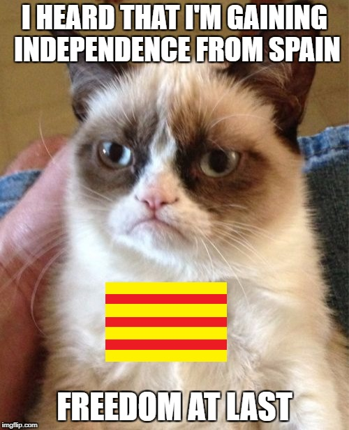 Grumpy Cat alonia | I HEARD THAT I'M GAINING INDEPENDENCE FROM SPAIN FREEDOM AT LAST | image tagged in memes,grumpy cat,catalonia,spain,independence | made w/ Imgflip meme maker