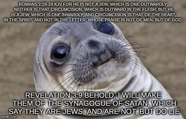 Awkward Moment Sealion Meme | ROMANS 2:28-29 KJV FOR HE IS NOT A JEW, WHICH IS ONE OUTWARDLY; NEITHER IS THAT CIRCUMCISION, WHICH IS OUTWARD IN THE FLESH: BUT HE IS A JEW | image tagged in memes,awkward moment sealion | made w/ Imgflip meme maker