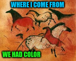WHERE I COME FROM WE HAD COLOR | made w/ Imgflip meme maker