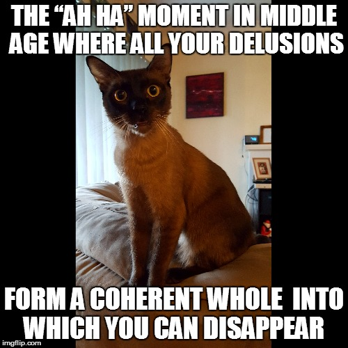 "Living the Dream | THE ""AH HA"" MOMENT IN MIDDLE AGE WHERE ALL YOUR DELUSIONS FORM A COHERENT WHOLE INTO WHICH YOU CAN DISAPPEAR 