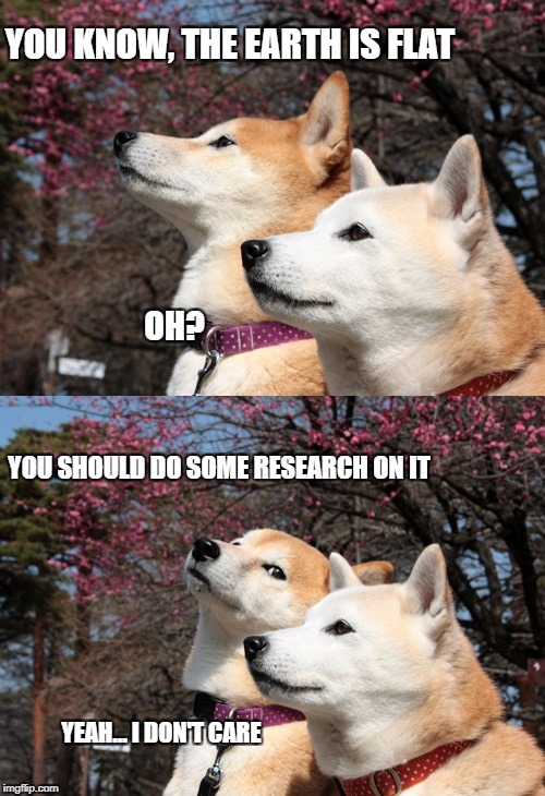 Bad pun dogs | YOU KNOW, THE EARTH IS FLAT YEAH... I DON'T CARE OH? YOU SHOULD DO SOME RESEARCH ON IT | image tagged in bad pun dogs | made w/ Imgflip meme maker