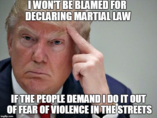 thinking trump | I WON'T BE BLAMED FOR DECLARING MARTIAL LAW IF THE PEOPLE DEMAND I DO IT OUT OF FEAR OF VIOLENCE IN THE STREETS | image tagged in thinking trump | made w/ Imgflip meme maker