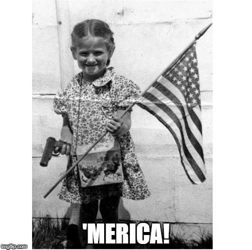 'MERICA! | 'MERICA! | image tagged in america,american flag,make america great again,2nd amendment | made w/ Imgflip meme maker