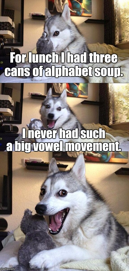 Bad Pun Dog Meme | For lunch I had three cans of alphabet soup. I never had such a big vowel movement. | image tagged in memes,bad pun dog | made w/ Imgflip meme maker