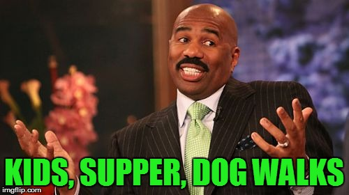 Steve Harvey Meme | KIDS, SUPPER, DOG WALKS | image tagged in memes,steve harvey | made w/ Imgflip meme maker