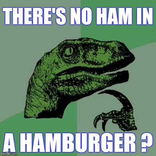How does stuff like this happen ? | THERE'S NO HAM IN A HAMBURGER ? | image tagged in memes,philosoraptor,hamburger,germany,where's the beef | made w/ Imgflip meme maker