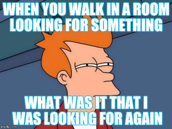 Futurama Fry Meme | WHEN YOU WALK IN A ROOM LOOKING FOR SOMETHING WHAT WAS IT THAT I WAS LOOKING FOR AGAIN | image tagged in memes,futurama fry | made w/ Imgflip meme maker
