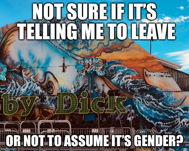 NOT SURE IF IT'S TELLING ME TO LEAVE OR NOT TO ASSUME IT'S GENDER? | image tagged in memes,funny | made w/ Imgflip meme maker