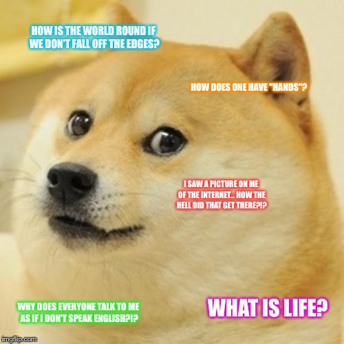 "Questions doge asks himself | HOW IS THE WORLD ROUND IF WE DON'T FALL OFF THE EDGES? HOW DOES ONE HAVE ""HANDS""? I SAW A PICTURE ON ME OF THE INTERNET... HOW THE HELL DID  