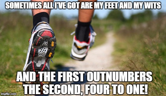 That would make my wit only half -- get it? | SOMETIMES ALL I'VE GOT ARE MY FEET AND MY WITS AND THE FIRST OUTNUMBERS THE SECOND, FOUR TO ONE! | image tagged in runner's soles | made w/ Imgflip meme maker