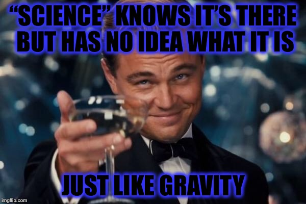 "Leonardo Dicaprio Cheers Meme | ""SCIENCE"" KNOWS IT'S THERE BUT HAS NO IDEA WHAT IT IS JUST LIKE GRAVITY 