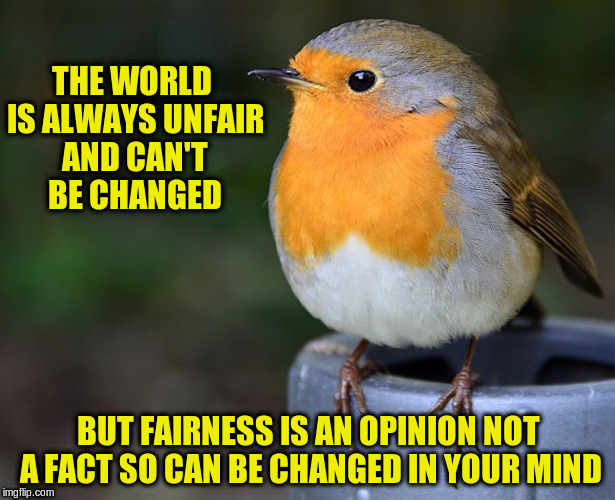 THE WORLD IS ALWAYS UNFAIR AND CAN'T BE CHANGED BUT FAIRNESS IS AN OPINION NOT A FACT SO CAN BE CHANGED IN YOUR MIND | made w/ Imgflip meme maker