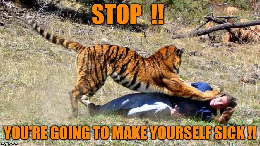 Human meat is bad for you | STOP  !! YOU'RE GOING TO MAKE YOURSELF SICK !! | image tagged in tiger attack,let me help you to my left arm,funny memes,no way jose,yes sir e bobby | made w/ Imgflip meme maker