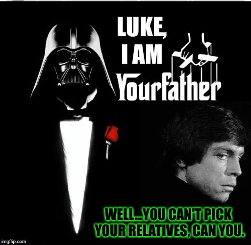 The Future Of The Vader Crime Family Is Uncertain | LUKE, I AM WELL...YOU CAN'T PICK YOUR RELATIVES, CAN YOU. | image tagged in star wars,darth vader luke skywalker,the godfather,mafia don,mafia | made w/ Imgflip meme maker