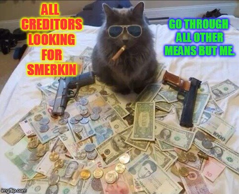 Notice: To All Creditors | ALL CREDITORS LOOKING FOR SMERKIN GO THROUGH ALL OTHER MEANS BUT ME. | image tagged in memes,muscle cat,cat with guns,looking,smerkin,go away | made w/ Imgflip meme maker
