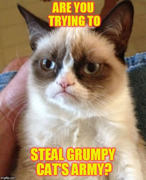 Grumpy Cat Meme | ARE YOU TRYING TO STEAL GRUMPY CAT'S ARMY? | image tagged in memes,grumpy cat | made w/ Imgflip meme maker