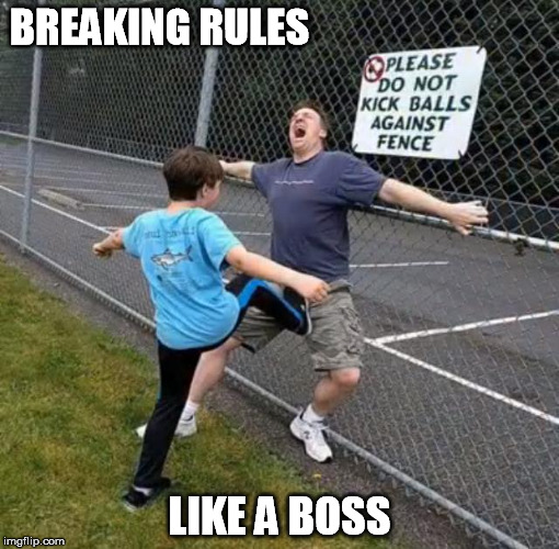 BREAKING RULES LIKE A BOSS | image tagged in rules,breaking the rules,like a boss | made w/ Imgflip meme maker