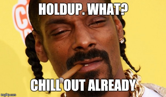HOLDUP. WHAT? CHILL OUT ALREADY | image tagged in chill-e dogg | made w/ Imgflip meme maker