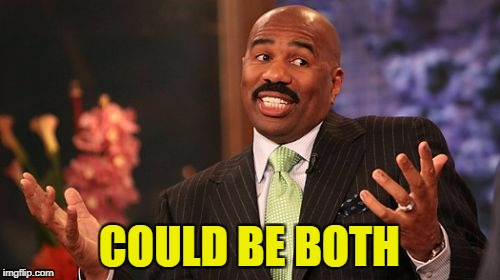 Steve Harvey Meme | COULD BE BOTH | image tagged in memes,steve harvey | made w/ Imgflip meme maker