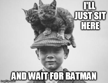 I'LL JUST SIT HERE AND WAIT FOR BATMAN | made w/ Imgflip meme maker