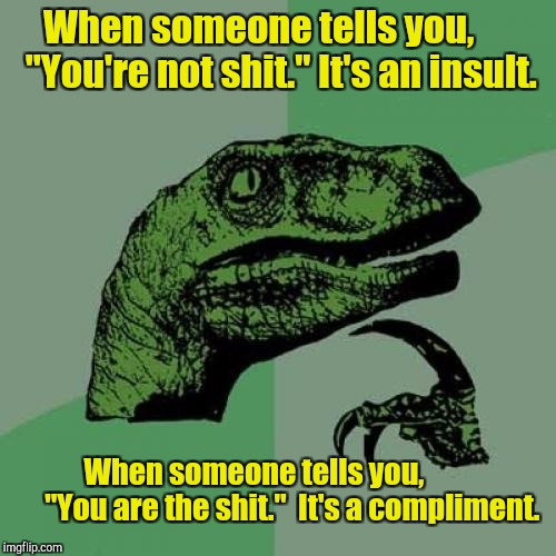 "Philosoraptor Meme | When someone tells you,       ""You're not shit."" It's an insult. When someone tells you,              ""You are the shit.""  It's a compliment 