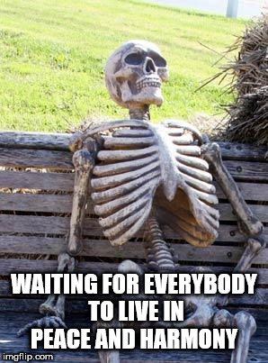 Waiting Skeleton Meme | WAITING FOR EVERYBODY TO LIVE IN PEACE AND HARMONY | image tagged in memes,waiting skeleton | made w/ Imgflip meme maker