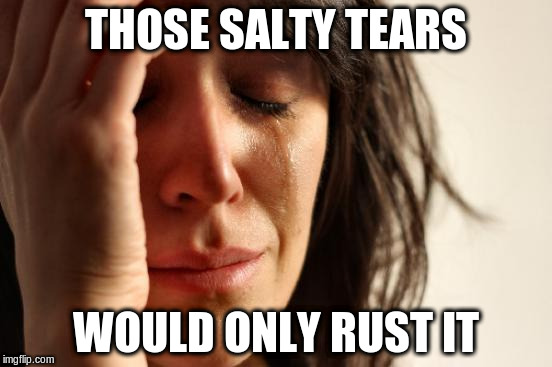 First World Problems Meme | THOSE SALTY TEARS WOULD ONLY RUST IT | image tagged in memes,first world problems | made w/ Imgflip meme maker