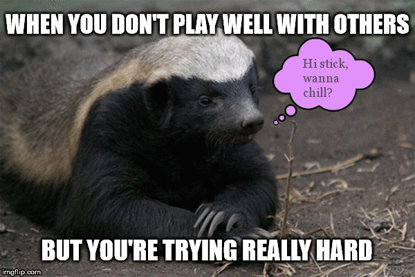 Socially Awkward Honey Badger Imgflip