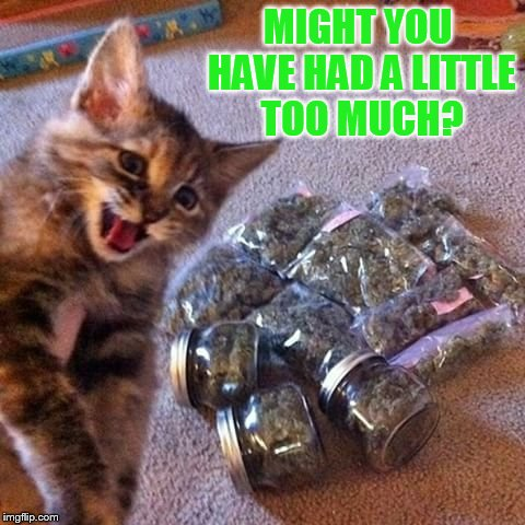 MIGHT YOU HAVE HAD A LITTLE TOO MUCH? | made w/ Imgflip meme maker