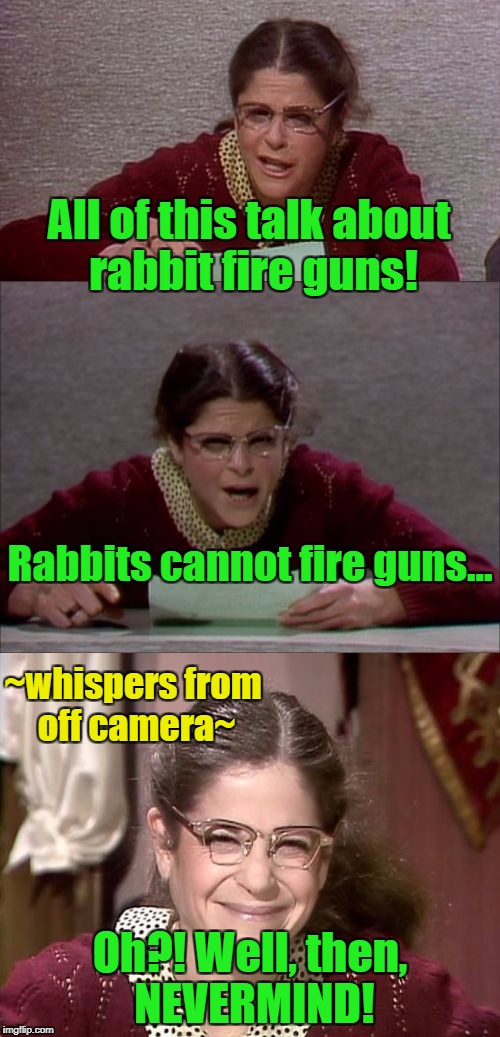 Rabbits MIGHT fire guns in some of the more twisted Bugs Bunny cartoons! | All of this talk about rabbit fire guns! Oh?! Well, then, NEVERMIND! Rabbits cannot fire guns... ~whispers from off camera~ | image tagged in bad pun gilda radner playing emily litella,guns,media,fake news | made w/ Imgflip meme maker