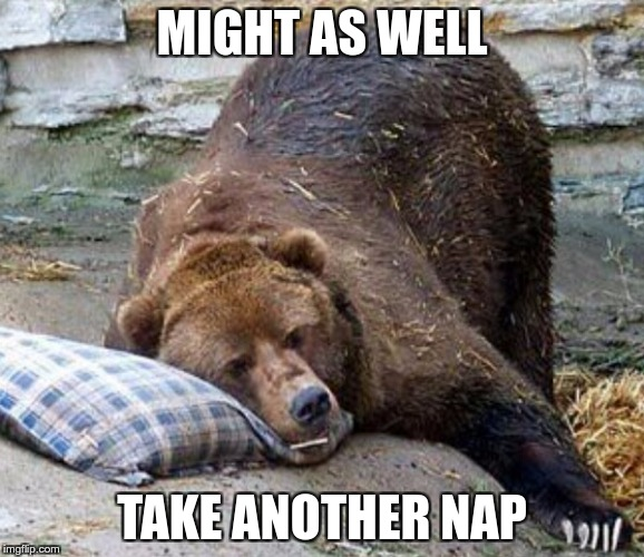 Sleep | MIGHT AS WELL TAKE ANOTHER NAP | image tagged in sleep | made w/ Imgflip meme maker
