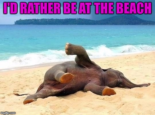 I'D RATHER BE AT THE BEACH | made w/ Imgflip meme maker