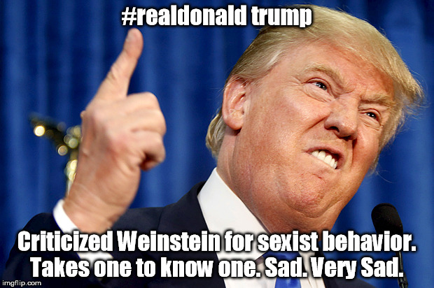 Donald Trump | #realdonald trump Criticized Weinstein for sexist behavior. Takes one to know one. Sad. Very Sad. | image tagged in donald trump | made w/ Imgflip meme maker
