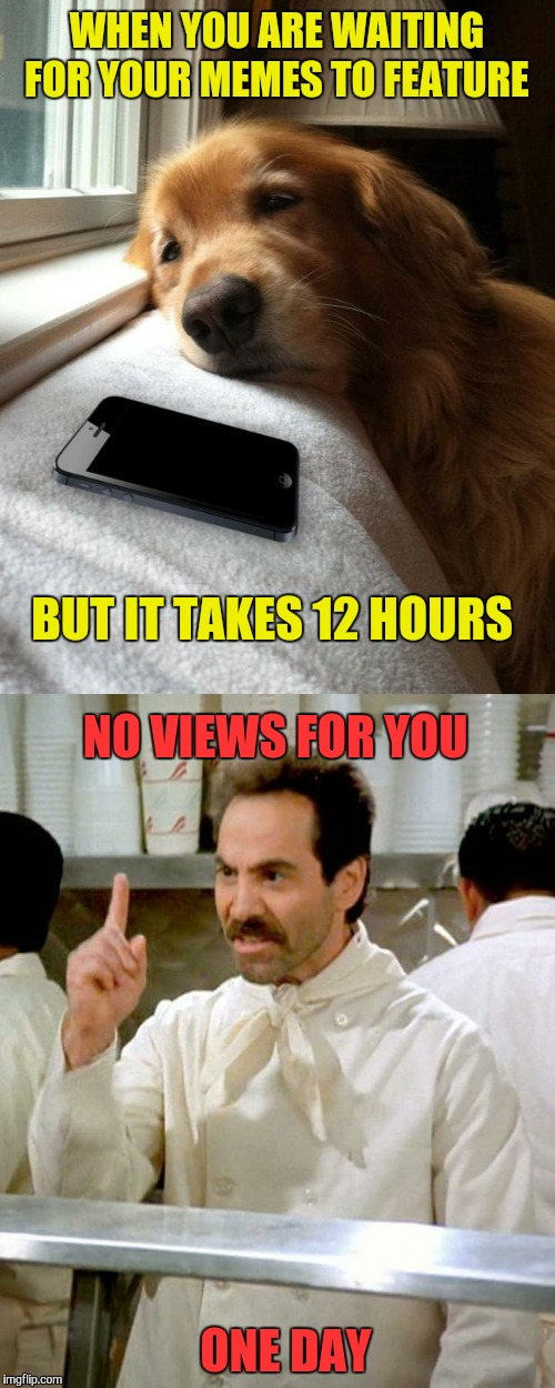 WHEN YOU ARE WAITING FOR YOUR MEMES TO FEATURE ONE DAY BUT IT TAKES 12 HOURS NO VIEWS FOR YOU | image tagged in memes,soup nazi,submissions,funny,sad dog | made w/ Imgflip meme maker