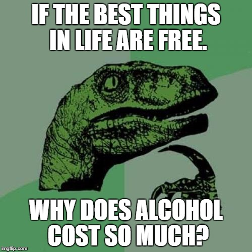 Philosoraptor Meme | IF THE BEST THINGS IN LIFE ARE FREE. WHY DOES ALCOHOL COST SO MUCH? | image tagged in memes,philosoraptor | made w/ Imgflip meme maker