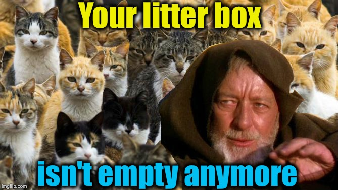 Your litter box isn't empty anymore | made w/ Imgflip meme maker