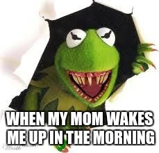 WHEN MY MOM WAKES ME UP IN THE MORNING | image tagged in demon kermit | made w/ Imgflip meme maker