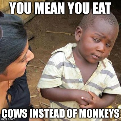 Third World Skeptical Kid Meme | YOU MEAN YOU EAT COWS INSTEAD OF MONKEYS | image tagged in memes,third world skeptical kid | made w/ Imgflip meme maker