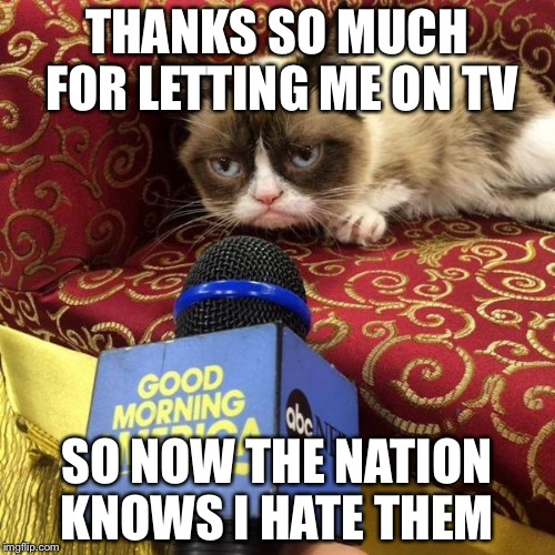 grumpy cat news | THANKS SO MUCH FOR LETTING ME ON TV SO NOW THE NATION KNOWS I HATE THEM | image tagged in grumpy cat news | made w/ Imgflip meme maker