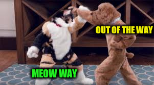 OUT OF THE WAY MEOW WAY | made w/ Imgflip meme maker