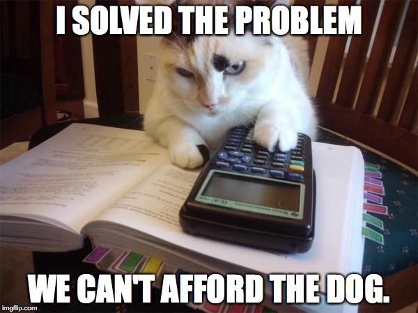 Math cat | I SOLVED THE PROBLEM WE CAN'T AFFORD THE DOG. | image tagged in math cat | made w/ Imgflip meme maker
