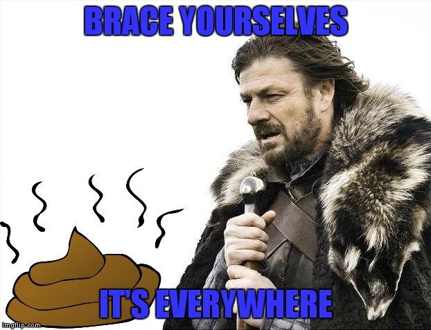 Poop on you! | BRACE YOURSELVES IT'S EVERYWHERE | image tagged in memes,brace yourselves x is coming | made w/ Imgflip meme maker
