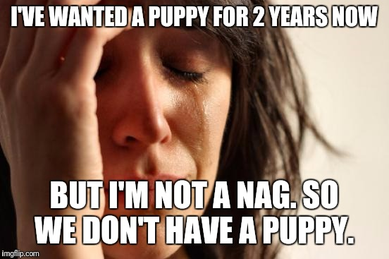 First World Problems Meme | I'VE WANTED A PUPPY FOR 2 YEARS NOW BUT I'M NOT A NAG. SO WE DON'T HAVE A PUPPY. | image tagged in memes,first world problems | made w/ Imgflip meme maker