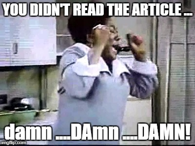 Florida Evans Damn | YOU DIDN'T READ THE ARTICLE ... damn ....DAmn ....DAMN! | image tagged in florida evans damn | made w/ Imgflip meme maker