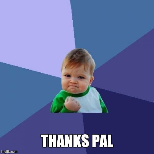 Success Kid Meme | THANKS PAL | image tagged in memes,success kid | made w/ Imgflip meme maker