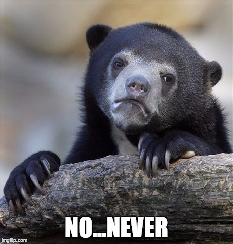 Confession Bear Meme | NO...NEVER | image tagged in memes,confession bear | made w/ Imgflip meme maker