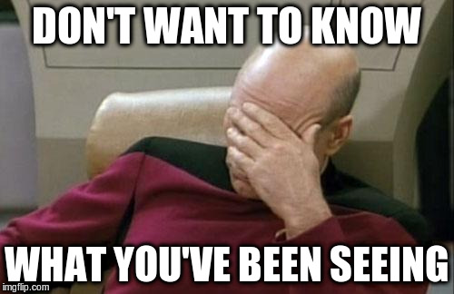 Captain Picard Facepalm Meme | DON'T WANT TO KNOW WHAT YOU'VE BEEN SEEING | image tagged in memes,captain picard facepalm | made w/ Imgflip meme maker