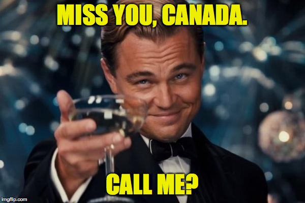 Leonardo Dicaprio Cheers Meme | MISS YOU, CANADA. CALL ME? | image tagged in memes,leonardo dicaprio cheers | made w/ Imgflip meme maker